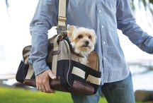Dog Carriers / by PupLife Dog Supplies