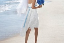 Wedding / by Susan Wall