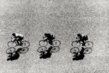 Cycling / by Sophie Bishop