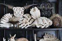 OCEAN LIFE / Shells, Coral, Beachy deco