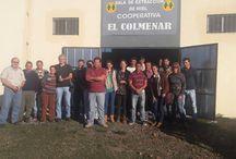 Cooperativa El Colmenar