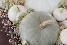 Herfstversiering / Witte pompoen