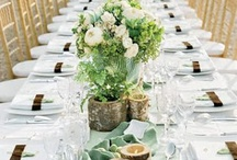 Banquet Ideas / Tressle Setup