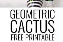 cactus a imprimer