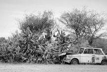 ARGENTINA por Ricardo Wittmann / Fotos de viagens a Argentina