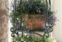 idéias de jardim