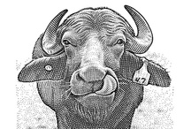 "WSJ Hedcuts / Below is a selection of notable dot-ink portraits, or ""hedcuts"", that have appeared in The Wall Street Journal. To learn about the artists behind these celebrated images, go here: http://on.wsj.com/MijoiG. / by The Wall Street Journal"