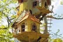 Case sull'albero ❤️