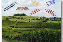 Champagne Day & wine tourism