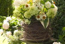 Flowers & Garden / by Bonnie Cornue