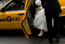 Gotham Hall Black & White Wedding  / by Maya Kalman
