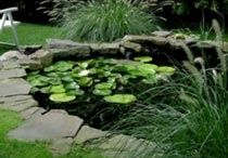 Garden Pond Liners / .5 and .75 Potable PVC flat sheet Pond Liners. Durable and flexible these Pond Liners are great for DIU Garden Ponds - The flexibility of the PVC enable you to fold and mold the liner to the shape of your desired pond.
