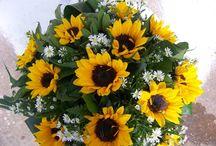 Λουλούδια | zerbera.gr / Λουλούδια online. Μάθετε περισσότερα στο http://www.zerbera.gr/index.php?dispatch=pages.view&p...