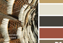 Color-browns