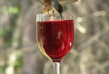 colibris &...