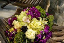 Purple Weddingdreams