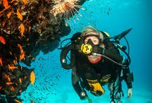 Rebreathers / My fav images