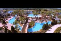 Orlando All Inclusive Resorts / Orlando All Inclusive Resorts