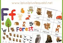 Ecosystems: Temperate Forest
