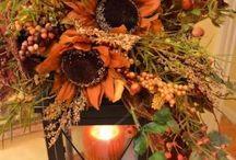 Fall / by Marissa Lopez Patterson