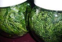 yeşilliklerin bozulmadan saklama şekli