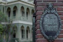 The Haunted Mansion / De spookklassieker van het park!