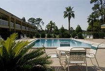 Hotels in USA / Find best Discount ,hot deals and best offers on direct booking to Travlu.com/