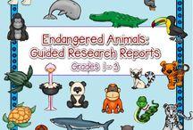 2nd Grade Science / Social Studies