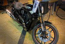 2016 Models / by Hal's Harley-Davidson