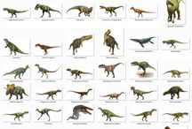 Dinosaurs / How lucky we are that some of these monsters are no longer roaming around !