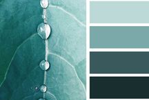 Colour My Life / A collection of our favourite event and wedding colour palettes.