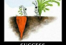 Inspiration For Success / Inspiring Words to Help You Succeed!