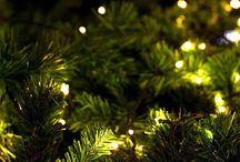 Christmas ☃️