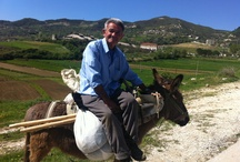 Rural Albania / Photos from the latest trips through the Albanian small towns and villages.