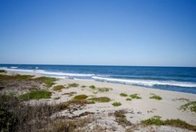 VERO BEACH OCEANFRONT / We Have Some Amazing Choices On Our Beautiful Oceanfront. Vero Beach is low-rise and uncrowded with miles of unspoiled beaches.  Barbara Martino-Sliva Realtor with Dale Sorensen Real Estate.  Contact me  772-321-4484.