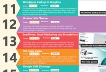 Wordpress & Plugins