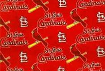 Love My ST.Louis Cardinals / by Missy Irwin Vincent