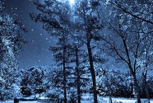 sad winter night scene