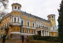 Niechcice - Pałac / Pałac w Niechcicach z połowy XIX wieku. Obecnie - własność prywatna.  Palace in Niechcice from the half of the 19th century. At present - private property.