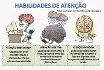 educação neurociências