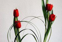 Flowers & Ikebana - Humans