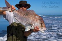 New Zealand Surfcasting / Images of surfcasting in New Zealand