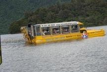 Rotorua Duck Tours