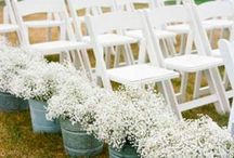 Wedding Ideas for Faby :-) / by Jennifer Benjamin