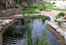 Zahrada-jezírka