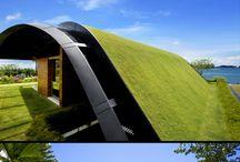 crobeturas birdi green roofs