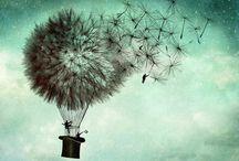 magic dandelions / make a wish / by jo whimsy