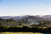 Towns to visit in NZ / Great towns in New Zealand to see and do
