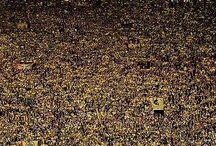 Football fans world wide