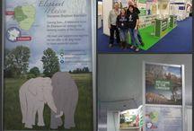 Elephant Haven / Sanctuary to help elephants.  Visit www.elephanthaven.com for information.